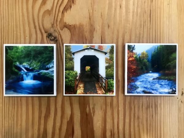 Dayna Law Photo Coasters by Tiffany Ottem