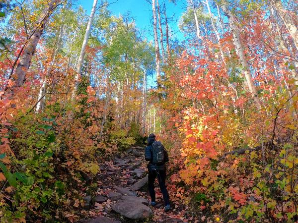 Woman hiking up Iron Mountain Trail during Fall Foliage