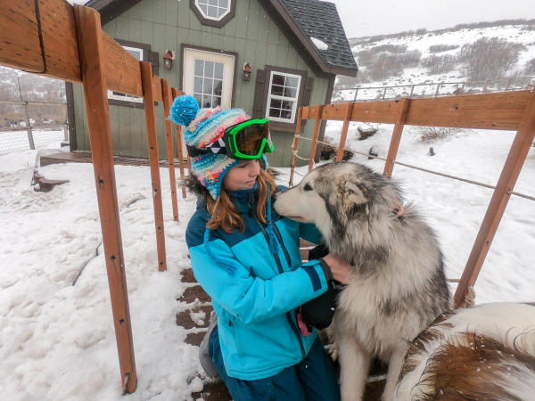 young girl petting a dog outside in the winter snow