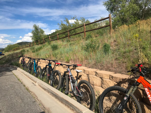 Mountain Bikes in a line along a wall