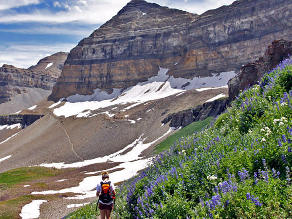 Hiking Mount Timpanogos