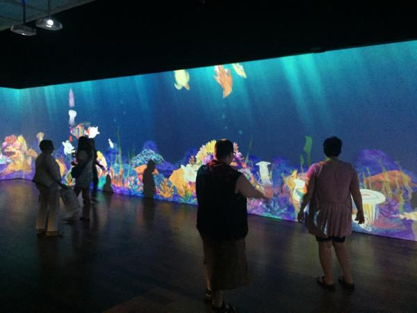 """Sketch Aquarium"" exhibit at Cameron Art Museum"
