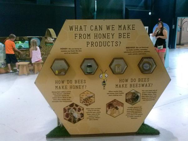 Honey Bee Products - Science Central