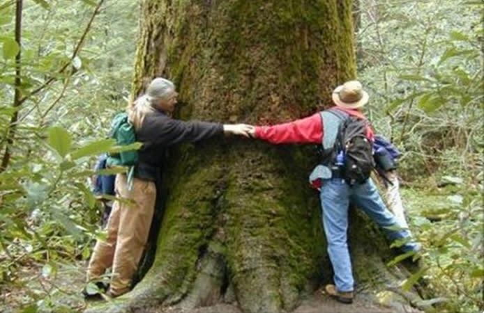People Hugging a Tree