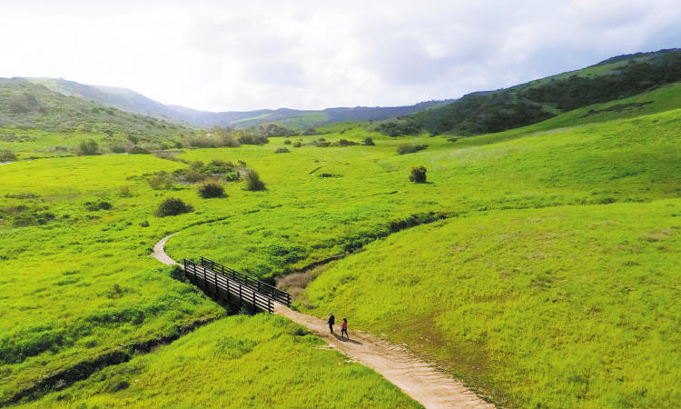 Stunning mounting vistas and lush green spaces are part of the Bommer Canyon trail experience.