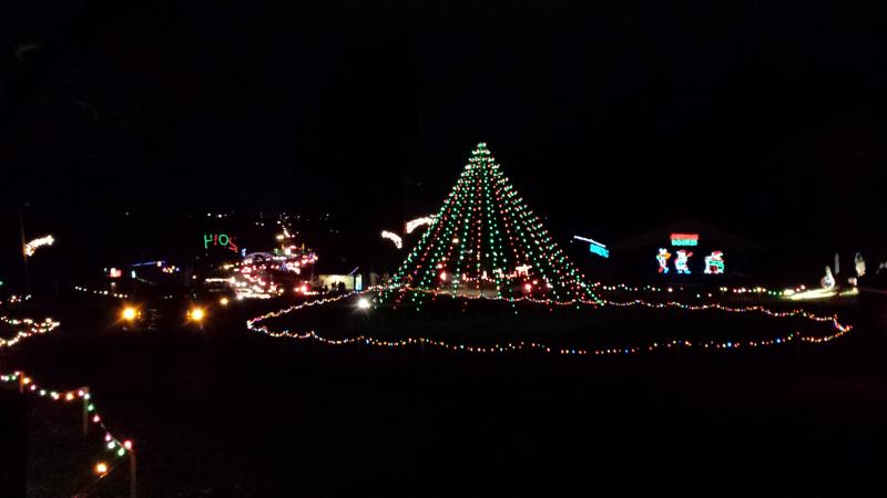The Festival of Lights will be on display at Jimmy Nash City Park in Martinsville beginning November 28.
