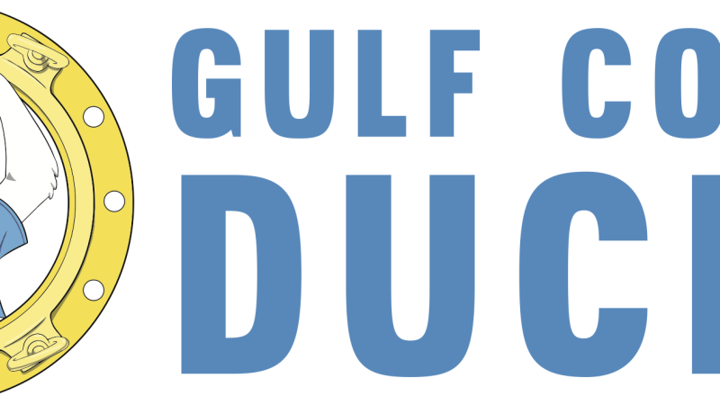 Gulf Coast Ducks