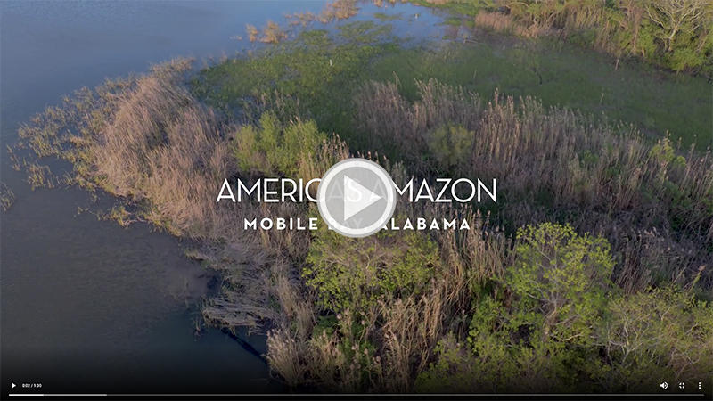America's Amazon with play