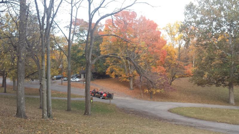Jimmy Nash Park Fall Color