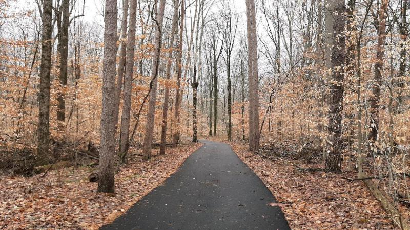 Enjoy the new paved trail at Morgan-Monroe State Forest.