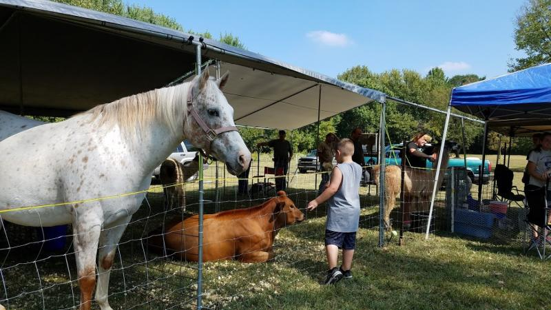 Meet the animals at the annual Old Town Waverly Park Festival.