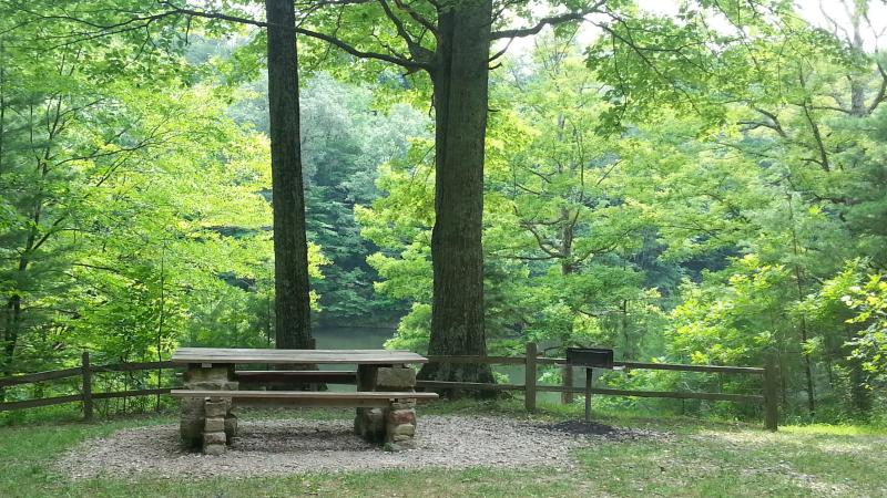 Picnic tables and grills are available at Morgan-Monroe State Forest and county and city parks.