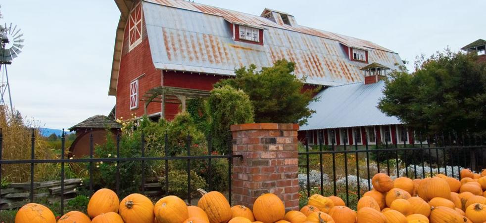 Eugene Halloween Events 2020 Church 2020 Halloween Events | Haunted Houses | Corn Mazes | Eugene