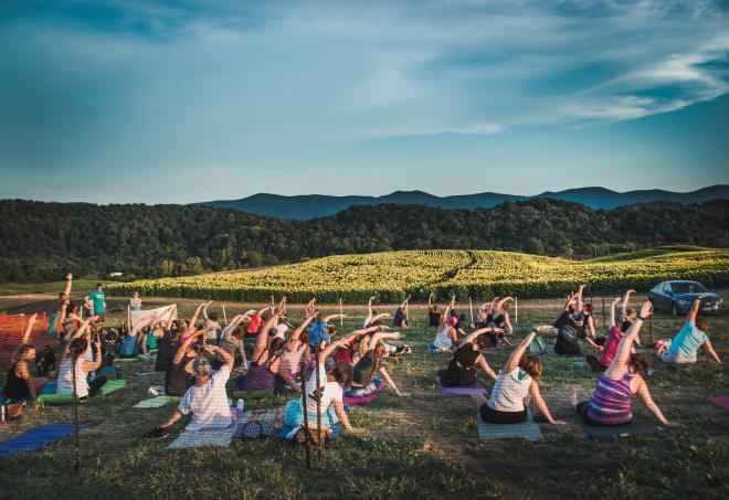 Sunflower Festival - Goat Yoga