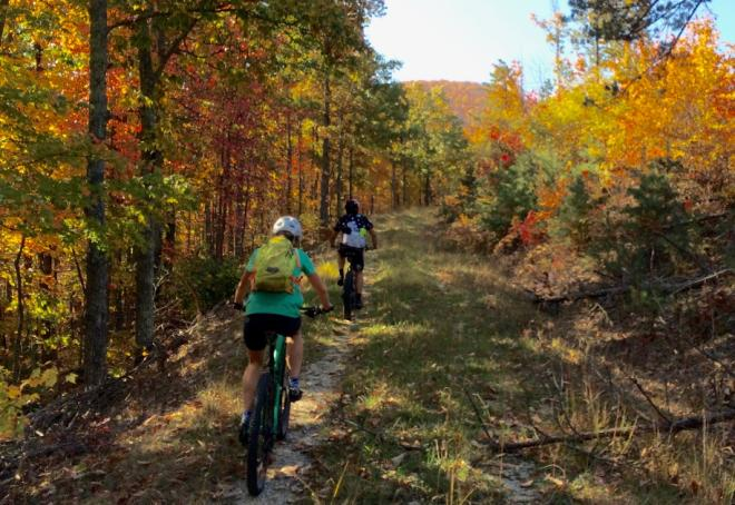 Glenwood Horse Trail - Mountain Biking