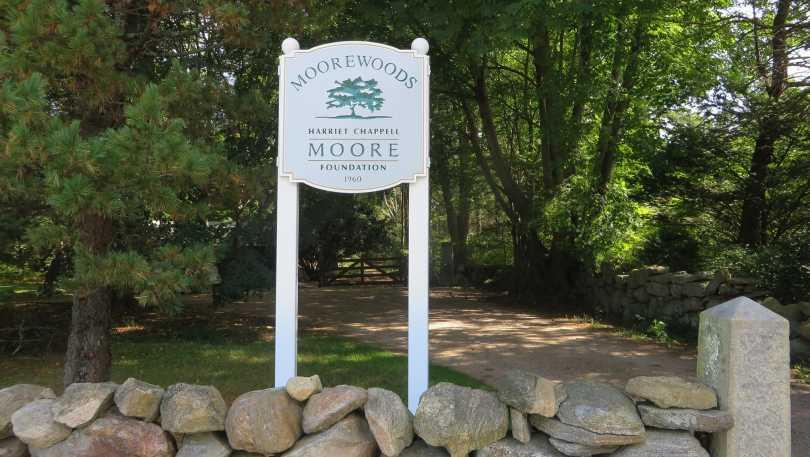 moore woods