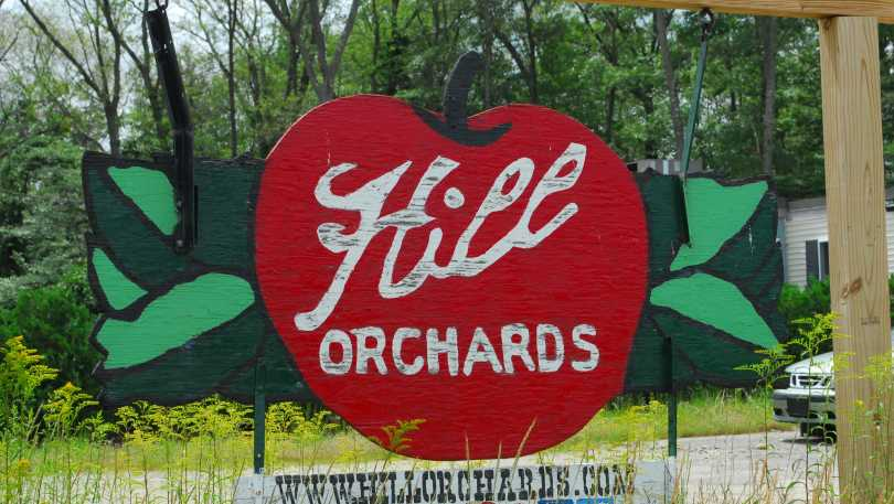 Hill Orchards