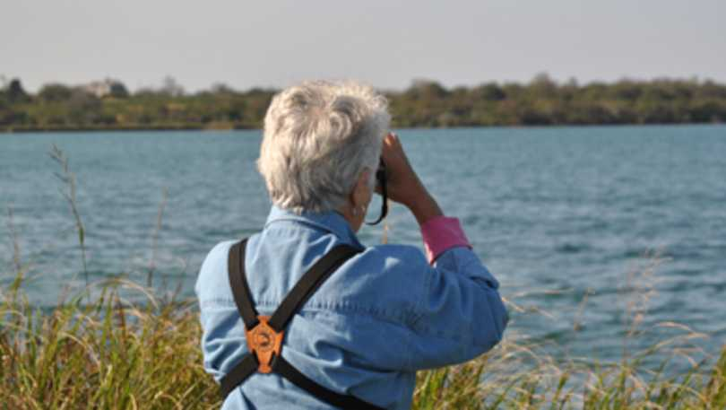 birding and view