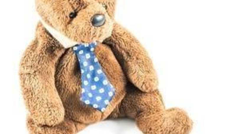 teddybearskins