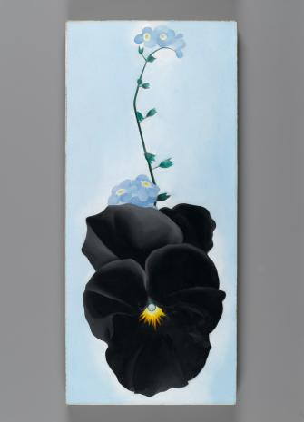 Art piece of a flower by Georgia O'Keeffe as part of the Art, Image, Style exhibit at the Wichita Art Museum