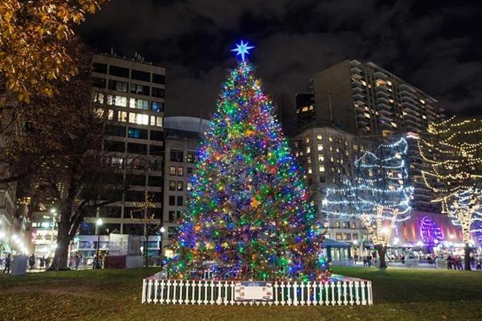 Boston's Holiday Lights Trail Boston Common