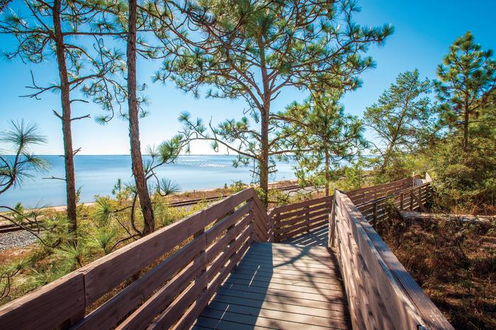 East Pensacola Bluffs Trail