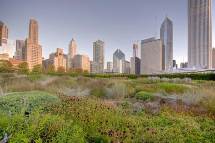 Lurie Garden in Chicago