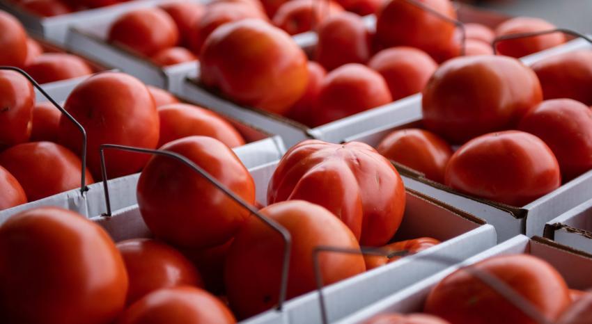 Josephs Wayside Market Produce