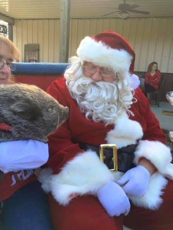 Santa at Natural Valley Ranch