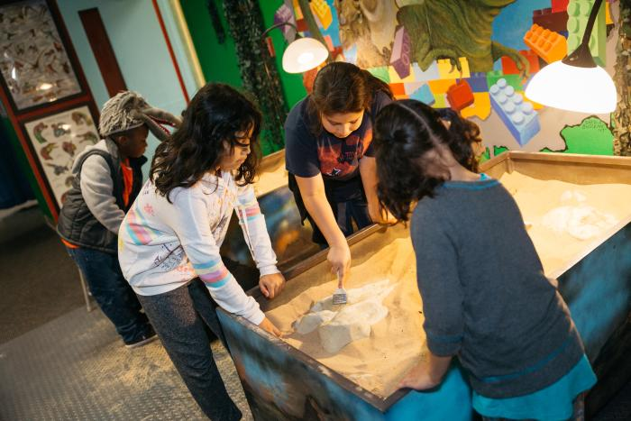A group explores archaeology at the Beaumont Children's Museum.