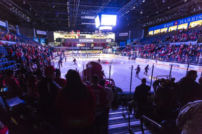 Rockford IceHogs crowd