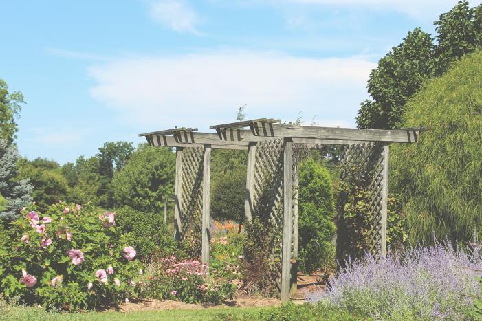 Effingham Garden