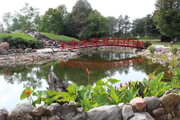 Garden in Champaign