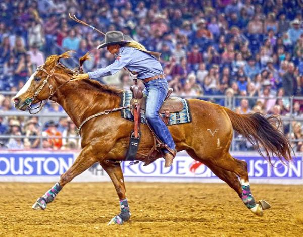 Rodeo Houston_one-time-use-only