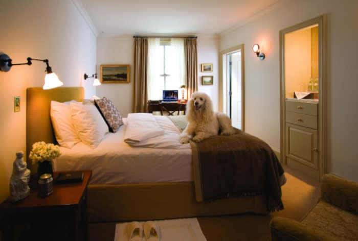Pet Friendly Hotels in the Pocono Mountains