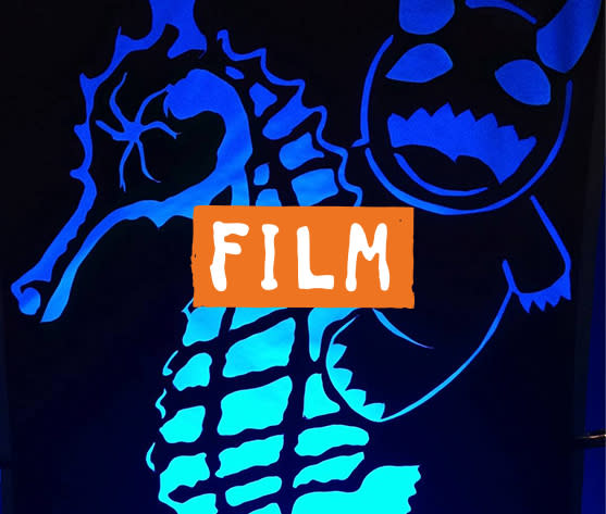 Cucalorus Film image with seahorse and stuffed animal