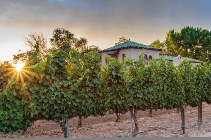 Casa Rondeña Winery