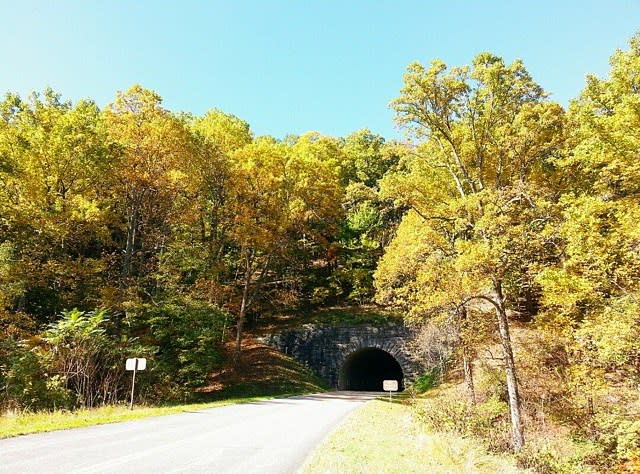 Fall Parkway Bridge - Fall Photo