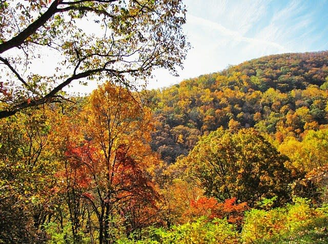 Fall Foliage Virginia S Blue Ridge Mountains Photo Gallery