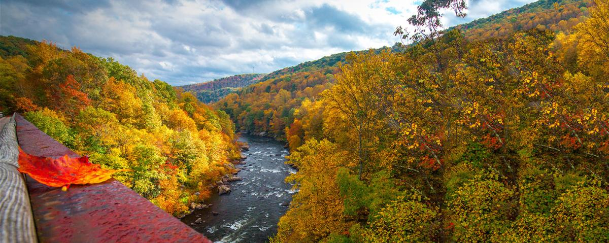 Fall in the Laurel Highlands