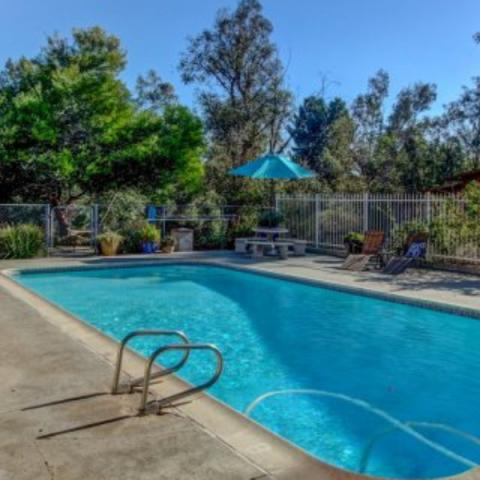 Bailey's Escape Merlot - Pool