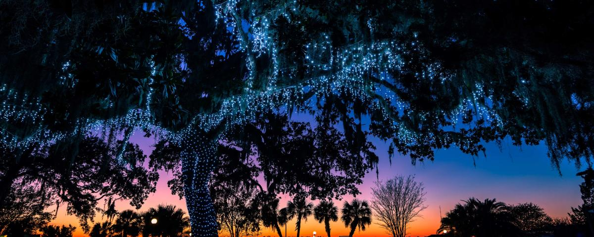 Christmas lights shine brightly in the Golden Isles each holiday season