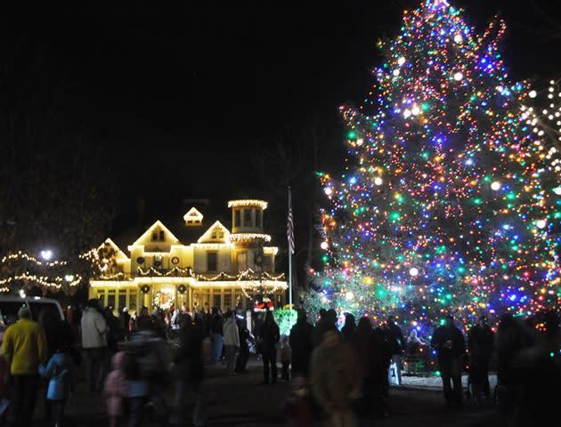 Hamilton Christmas Tree at the Kuser Farm Mansion in NJ