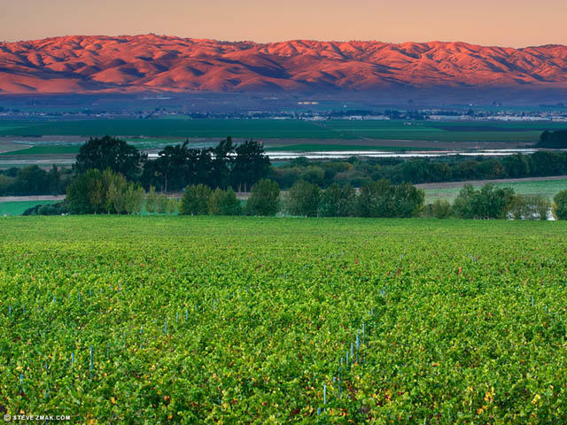 Sunset over Salinas Valley Vineyards, photo taken by Steve Zmak & the MCVGA