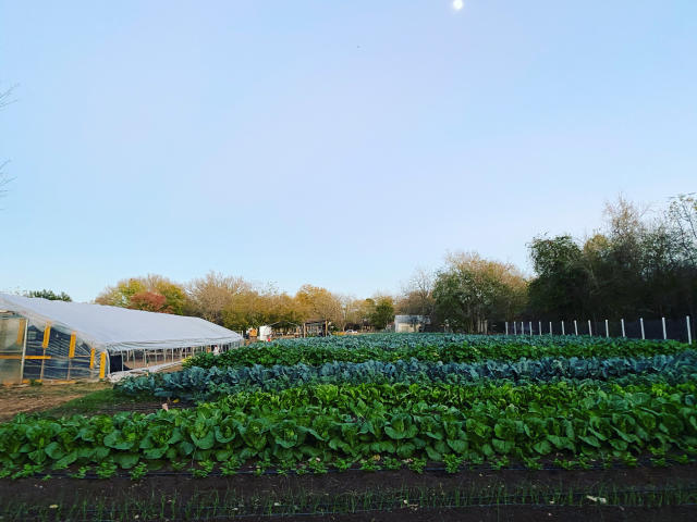 Farm Space