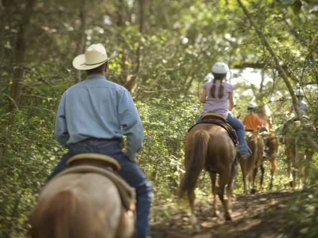 Horseback Riding - Renegade Trailhead