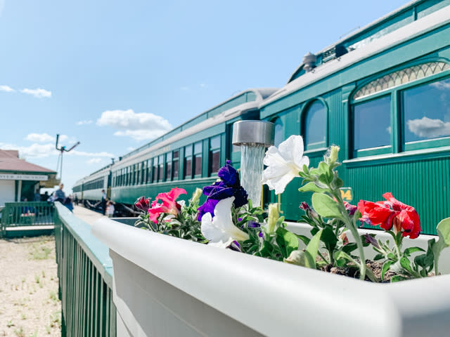 Prairie Dog Central Railway train cars behind flowers