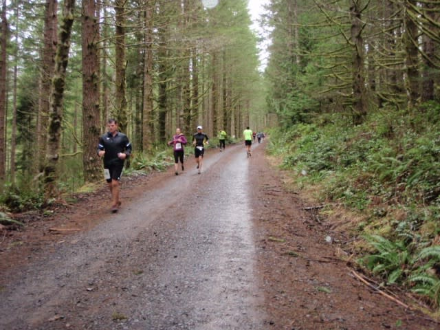 People Running Down Forest Path during a marathon in Olympia, WA