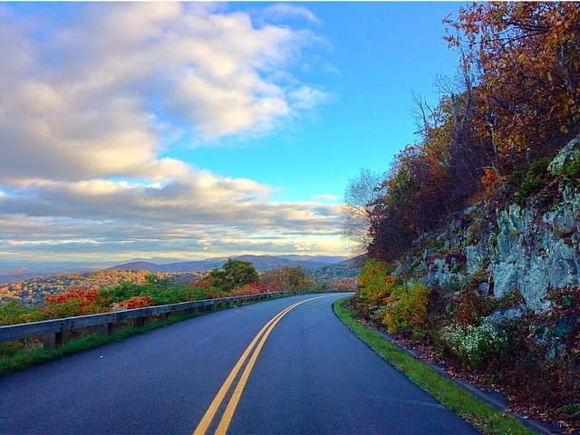 Blue Ridge Parkway - Fall Photo