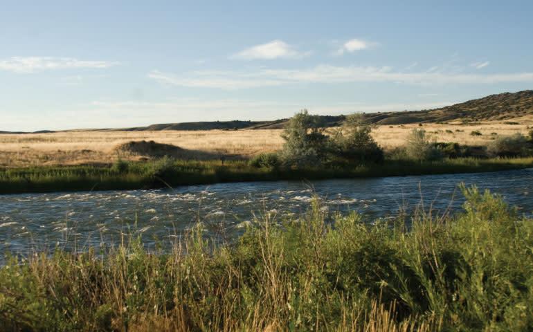Top 5 Fishing Secrets: Public Access
